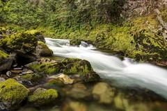 My Public Lands Roadtrip: Explore Quartzville Creek in Oregon