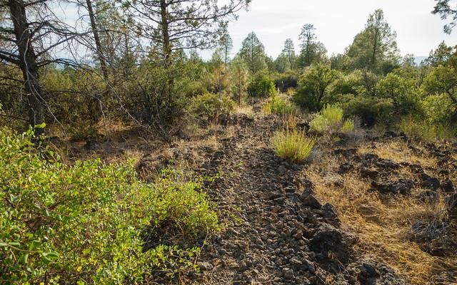 Lava trail coming off Hat Creek Rim