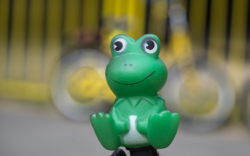 Frog on kid's bike