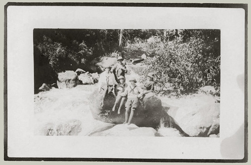 Five, out sitting on a rock