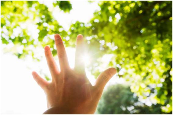 Ánh sáng mặt trời giúp bạn giảm huyết áp, tăng cường sức khoẻ tim mạch