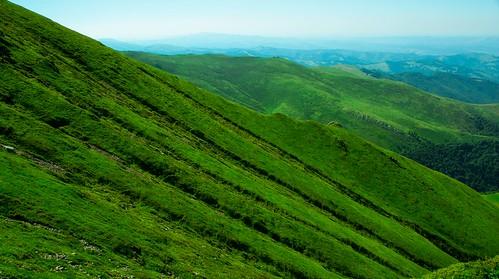 trees sky mountain green grass landscape view bulgaria peek
