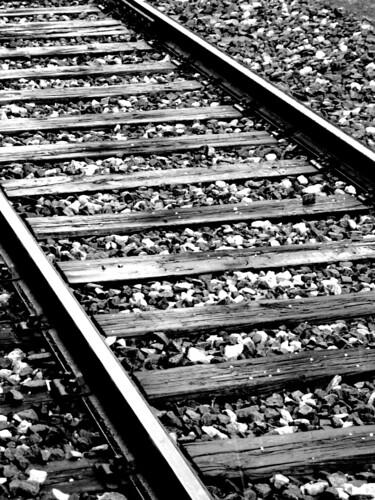haily track