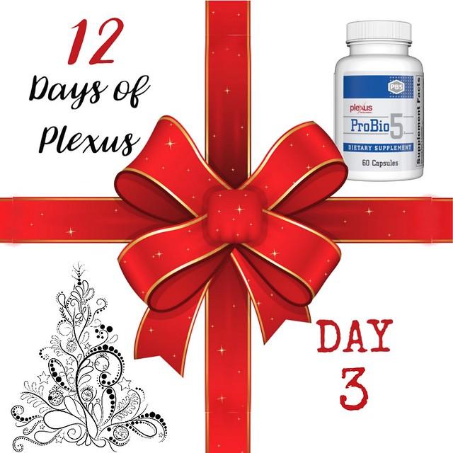 Day3Plexus