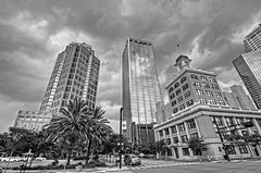 Tampa in Black and White