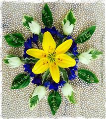 June Lily Mandala