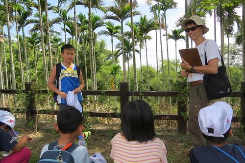 在陳雍青指導下,學童實戰操練解說技巧。(攝影:謝宗璋)