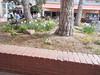 Town26April2014  :   DSCN4640