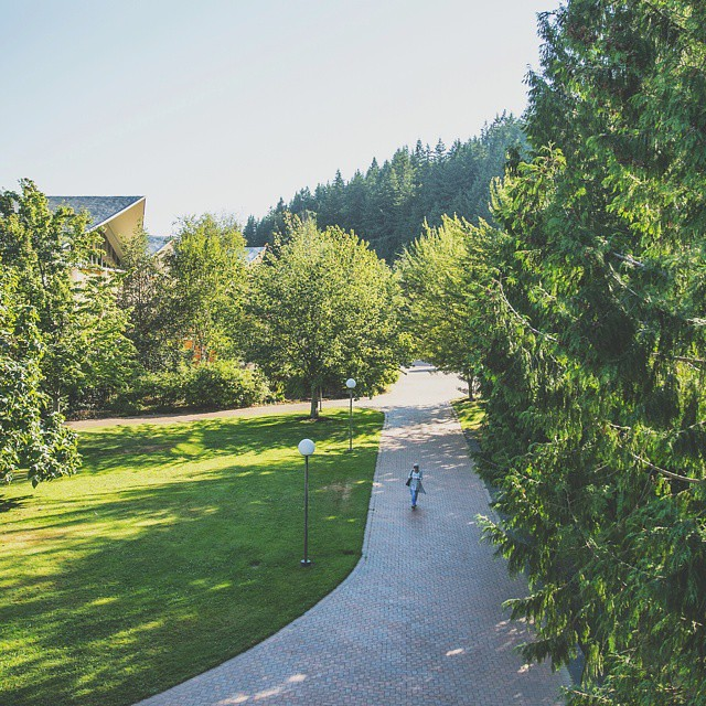 Love trees? Have we got the campus for you.