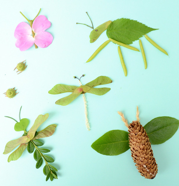 cbcparentsnaturebugs
