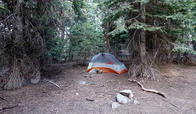 Campsite, July 19