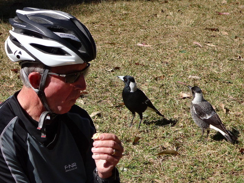 Eric and Magpies