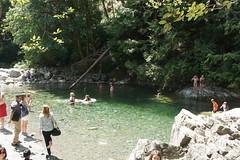Lynn Canyon: 30 foot pool