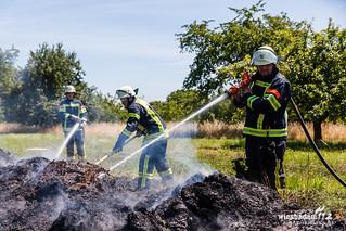 Misthaufen- & Grasflächenbrand Kloppenheim 10.07.15