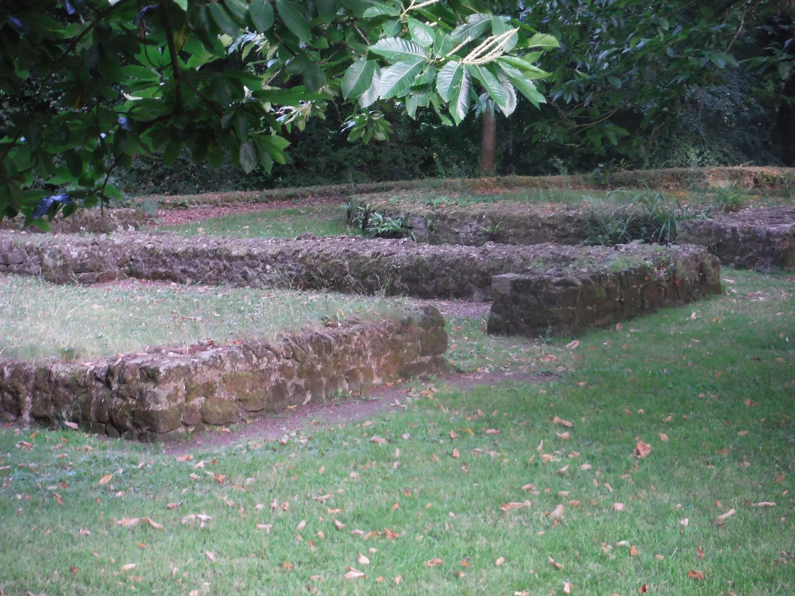 Foundations of the Norman St. Ann's Castle, Midhurst SWC Walk 217 Midhurst Way: Arundel to Midhurst