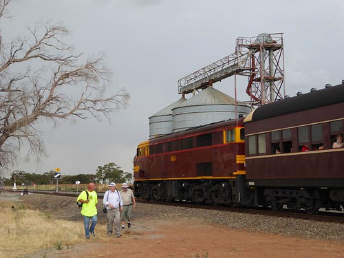 Ungarie sees a 44 and passenger train!