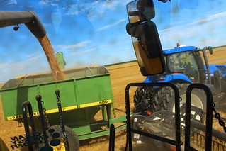 A day in the combine = this view.