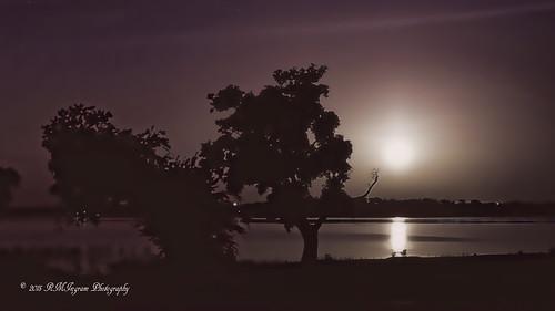 nature fullmoon moonset nightlandscape landscapephotography scenicviews nikonphotography nikond7100 firstdayoffullmoon lakefrontatfullmoonset