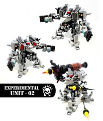 Experimental Unit - 02