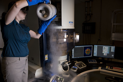 Cold Field Emission Scanning Transmission (STEM) and Transmission Electron Microscope (TEM)