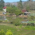 Sat, 01/21/2017 - 08:30 - Farm