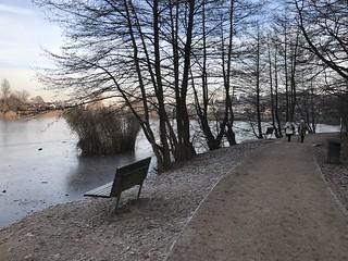 Koseški bajer in winter