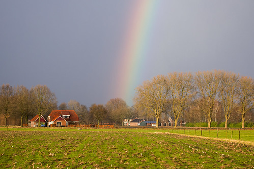 Rainbow - Harreveld