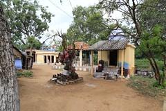 Shanmuga river Temple Complex (11)