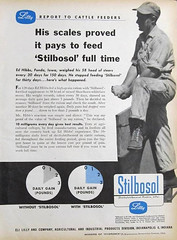DES Stilbosol 1957 Advert