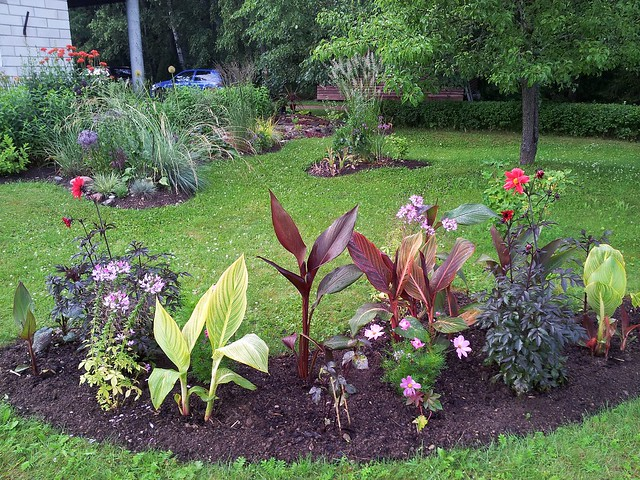 Summer Flowerbed