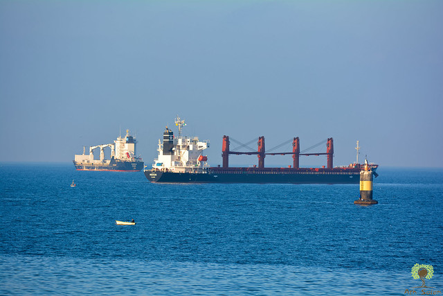 Navires dans la rade du port d'Alger