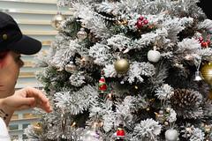 Christmas in Virginia 2016