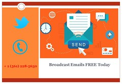 Best Email Campaign Services - STEdb.com - Send Email