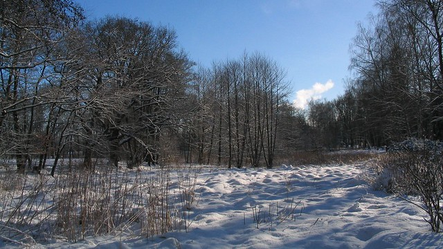 Winter im Park, Canon POWERSHOT A70