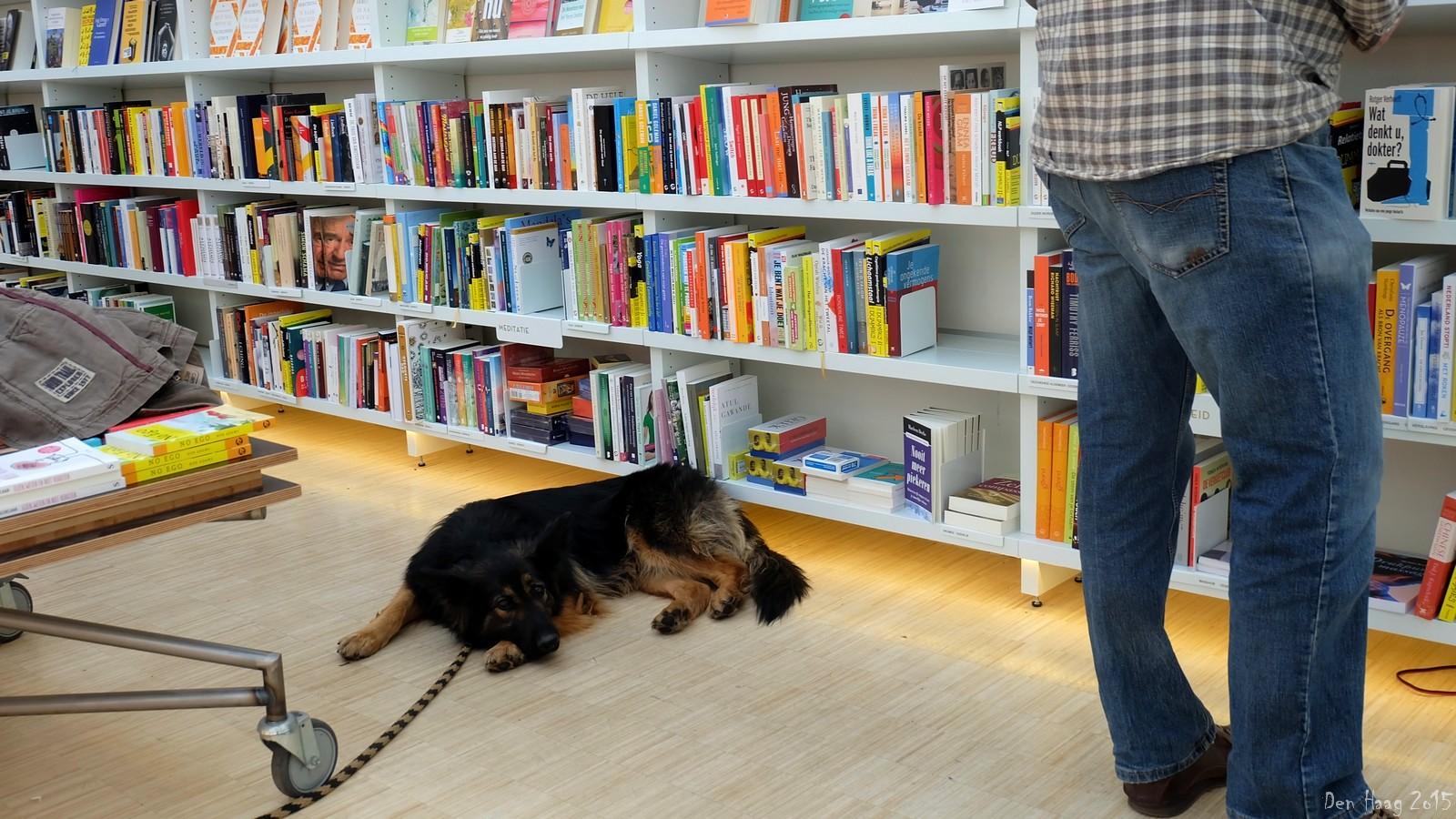 Bookstore, Den Haag, Nederland