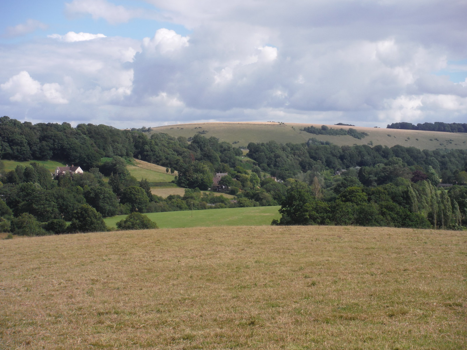 Ansty village and Swallowcliffe Down SWC Walk 252 Tisbury Circular via Donhead St. Andrew
