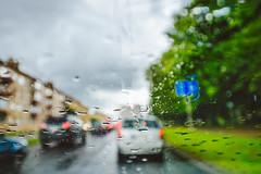 Raining #212/365