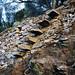 ikarian steps