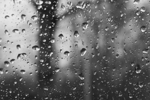 rain glass raindrops soak soaked tree trees texture abstract branches branch water wet rainy weather cold damp dreary inside lookingout look watch black white blackandwhite bw blackwhite monochrome contrast tone tones seethrough window