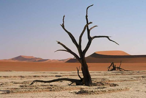 Wonderful desert - Namibia