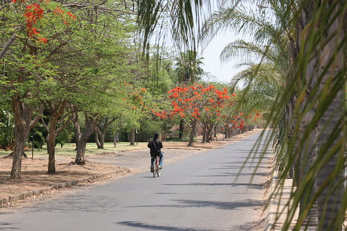 A man on a bike in Warmbaths, South Africa.