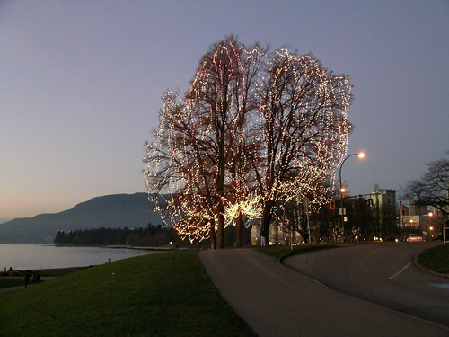English Bay Christmas Tree