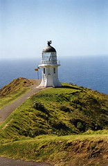 Cape Reinga, NZ