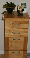 shelf(0.0), changing table(0.0), drawer(1.0), furniture(1.0), wood(1.0), chiffonier(1.0), wood stain(1.0), chest of drawers(1.0), chest(1.0), filing cabinet(1.0), hardwood(1.0),