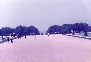 19830066