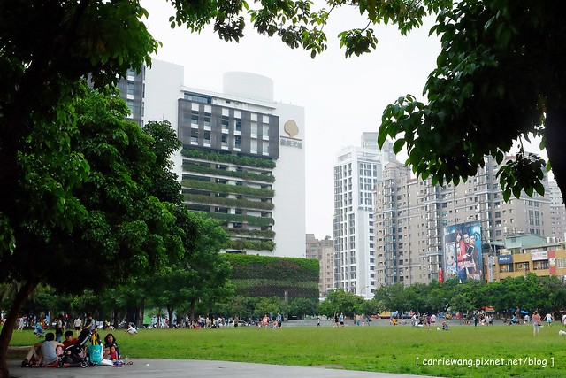 D公園 (8)