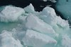 Bergy bits - Commonwealth Bay - Antarctica