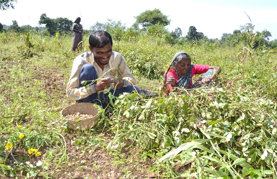Mahadev Charokar is visually-impaired but trains farmers in preparation of organic manure and crop tending.