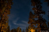 Yosemite - Twilight - 5586
