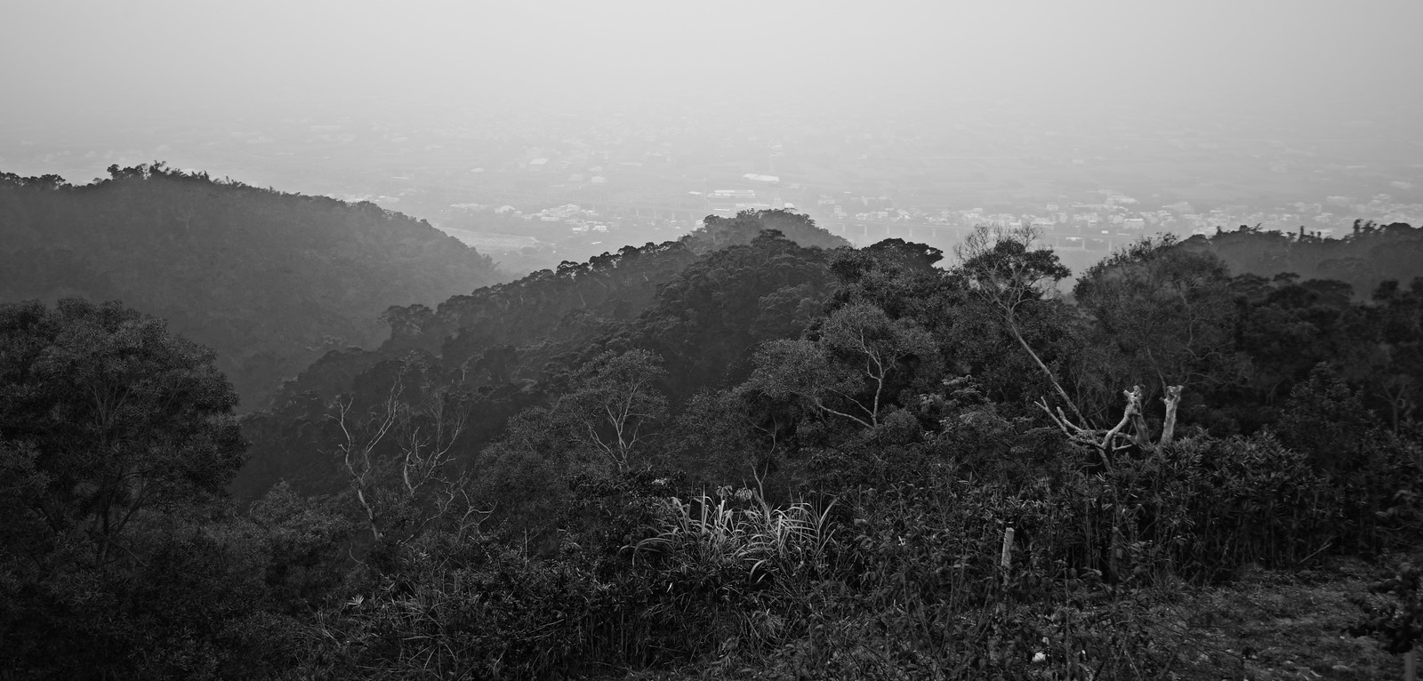 New Year Taiwan road Trip